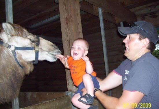 here eat my kid 15 Pictures of How Not To Parent Your Kid