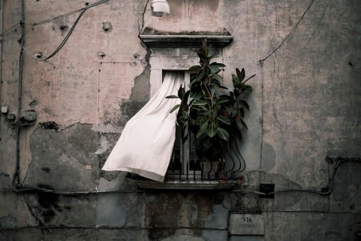 Riti Settennali di Penitenza a Guardia Sanframondi. Roberto Boccaccino