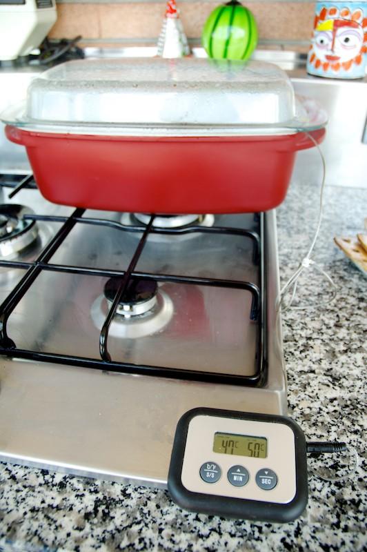 termometro da carne elettronico