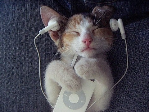 You can always enjoy your music in the comfort of your own home.