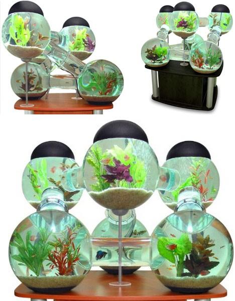 cool-custom-fish-tanks