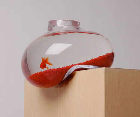 hanging-habitat-fish-shelf
