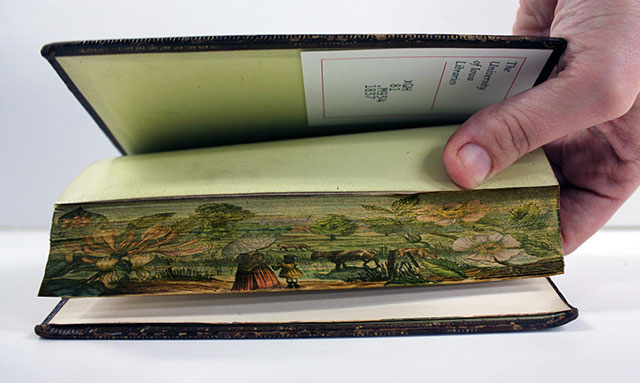 fore-edge-paintings-gif
