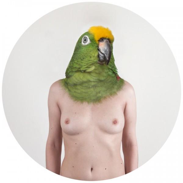 pappagallo-IMG_3003
