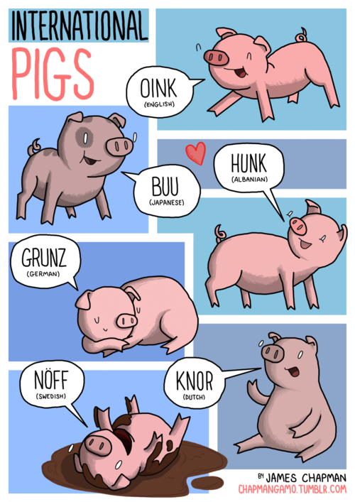 oink-maiale