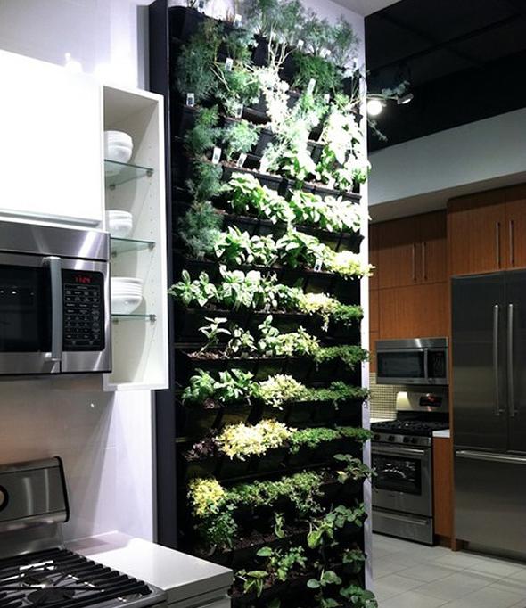 orto verticale in cucina