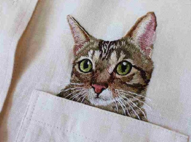 gatti-camicie-1