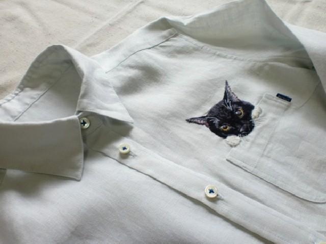 gatti-camicie-4