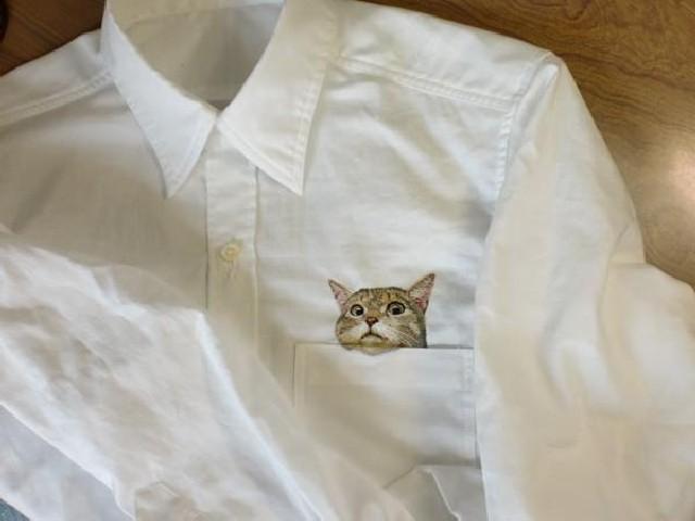 gatti-camicie-5