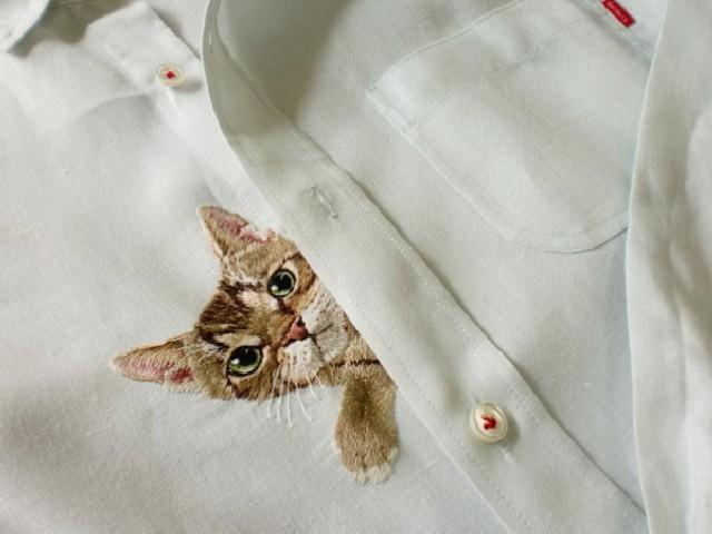 gatti-camicie-6