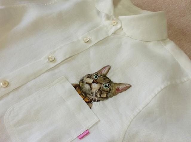 gatti-camicie-7