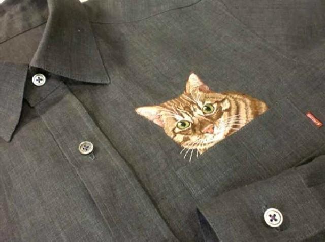 gatti-camicie-8