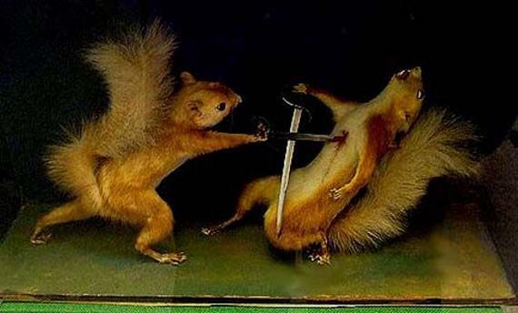 weird-taxidermy-animal-photos01