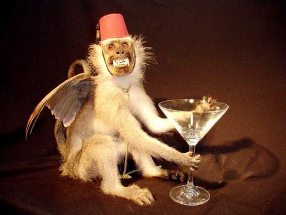 weird-taxidermy-animal-photos27