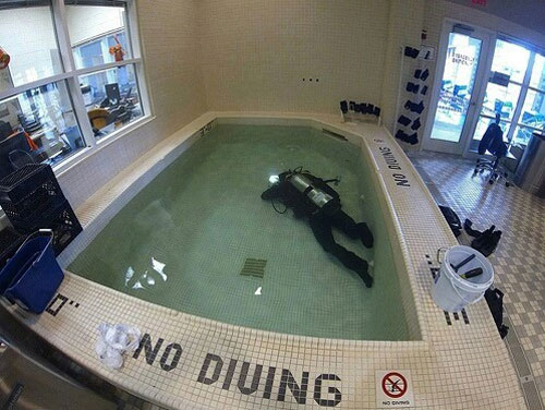 funny-do-what-i-want-no-diving