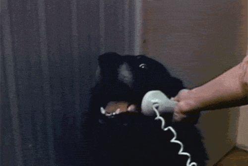 Urlatore-telefonico
