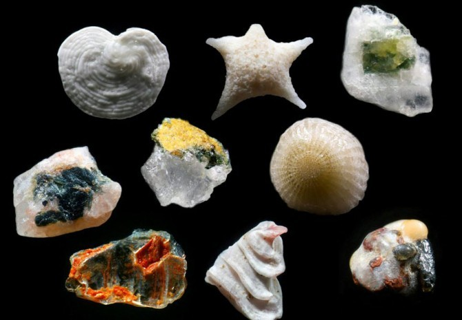 sand grains under microscope gary greenberg 3
