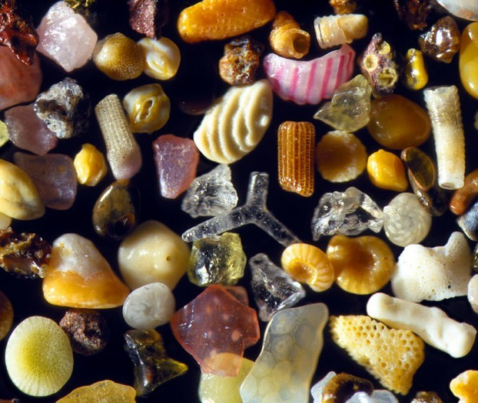 sand grains under microscope gary greenberg 4