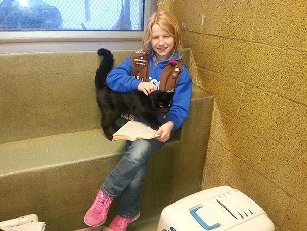 reading children shelter cats book buddies 14