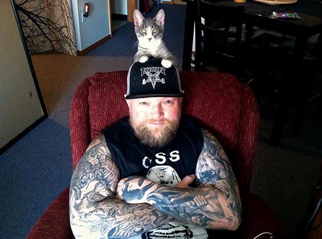 gatti-metallari