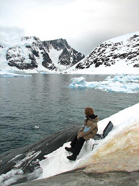 loo-antarctica_1737485i