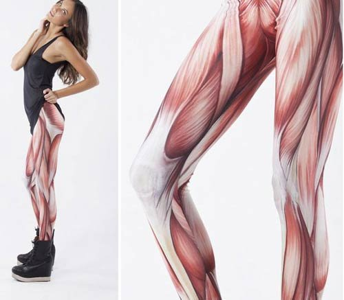 wtf leggings muscle