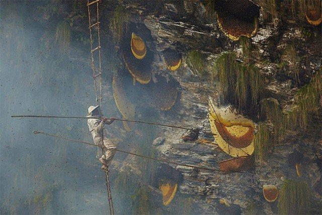 Honey Hunters of Nepal2 640x427