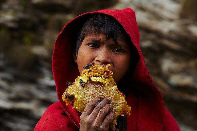 Honey Hunters of Nepal3 640x427