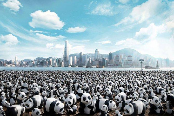 1600 pandas in hong kong designboom 01
