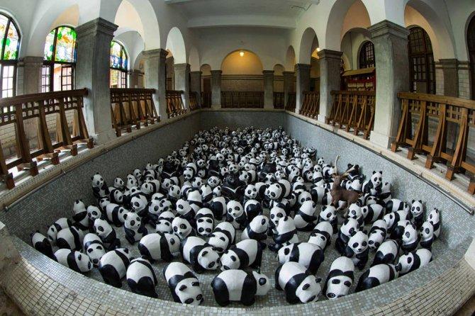 1600 pandas in hong kong designboom 03