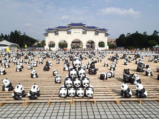 1600 pandas in hong kong designboom 06