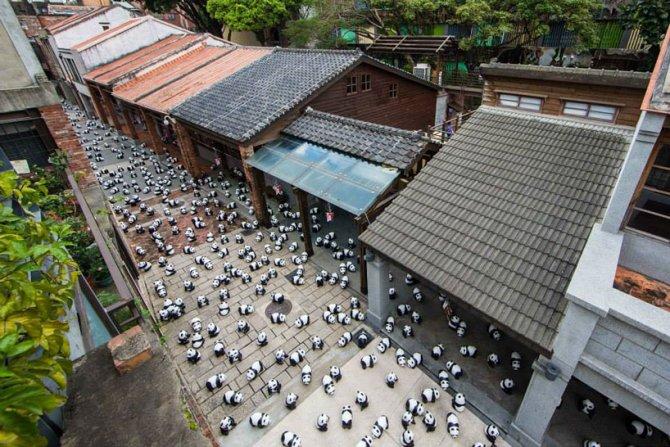 1600 pandas in hong kong designboom 07