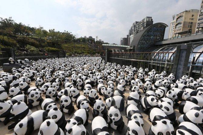 1600 pandas in hong kong designboom 09