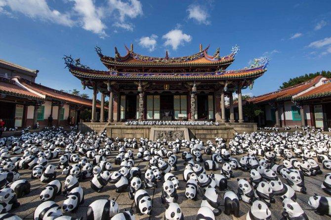 1600 pandas in hong kong designboom 10