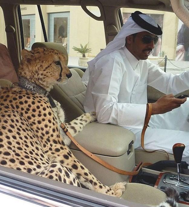 Dubai-es-diferente-2