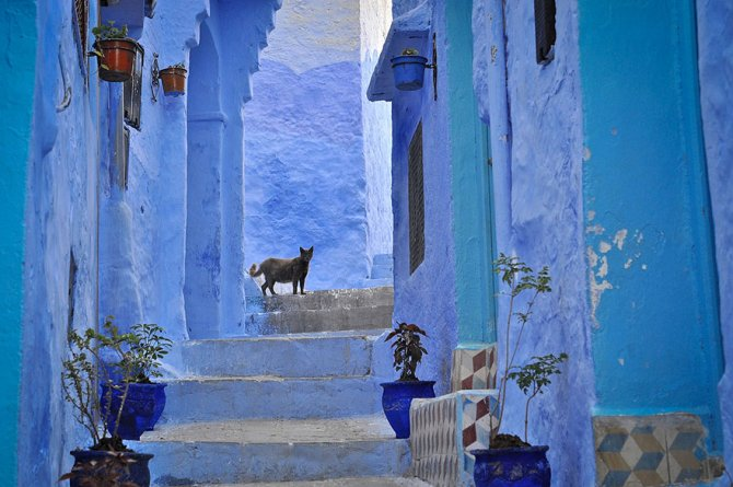 blue streets of chefchaouen morocco 3