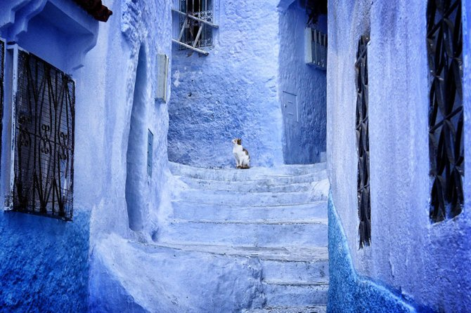 blue streets of chefchaouen morocco 4