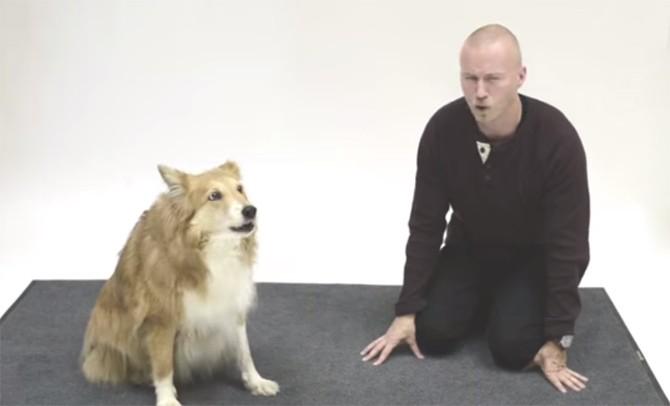 cane-uomo-abbaia