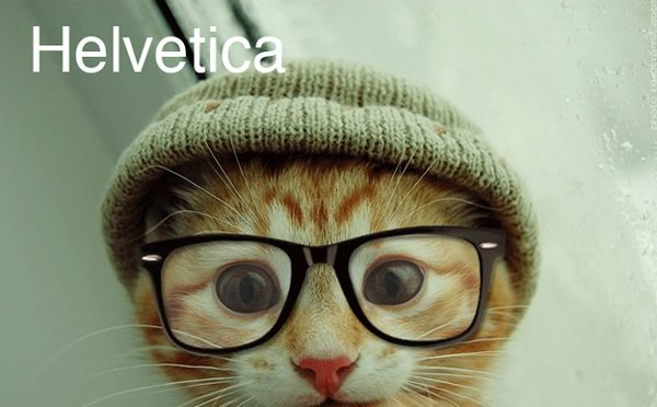 cats as fonts 1