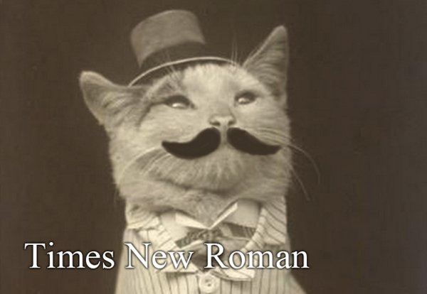 cats as fonts 10