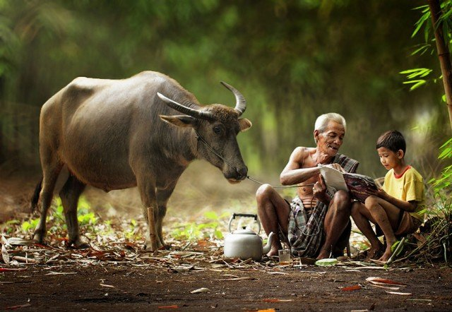Life In Indonesian Villages Captured by Herman Damar 9 640x442