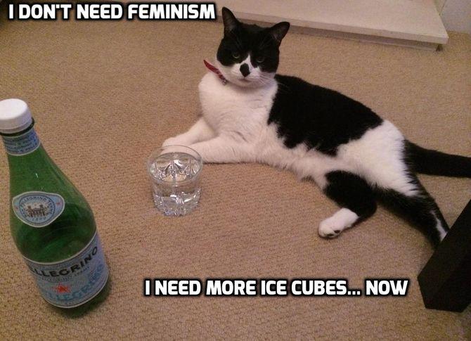 cats-icecube