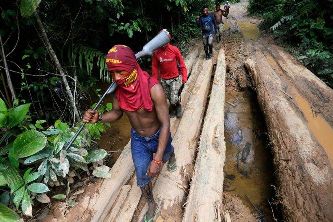 amazzonia tribu attacca taglialegna alberi 4