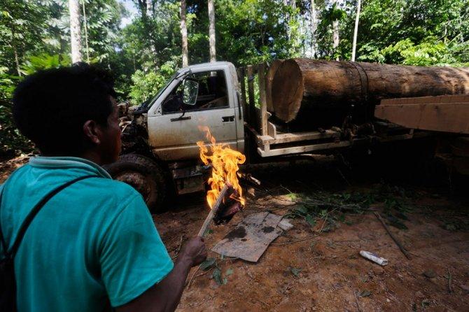 amazzonia tribu attacca taglialegna alberi 10
