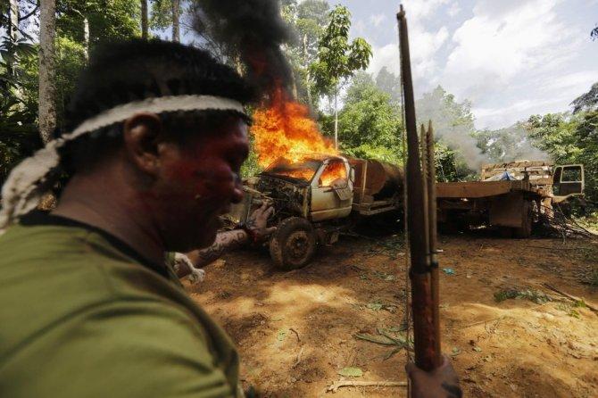amazzonia tribu attacca taglialegna alberi 1
