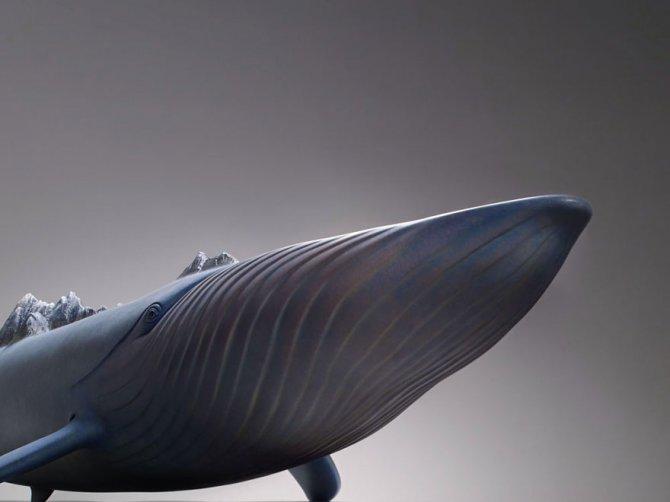 sculture surreali animali mondo spalle schiena 8