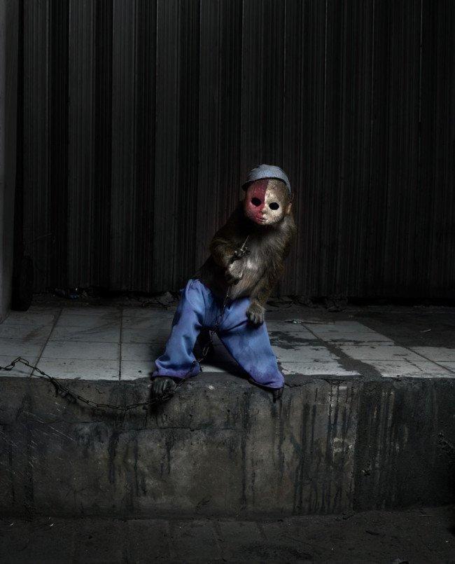 scimmia bambola incubo terrore 4
