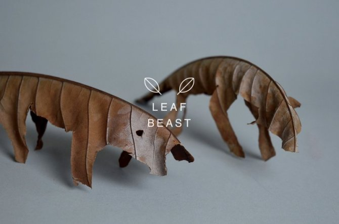 sculture foglie 1