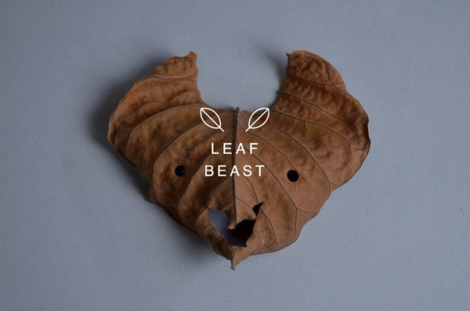 sculture foglie 8