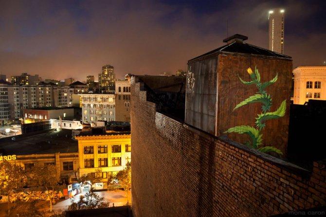 murales graffitti marijuana 3